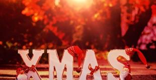 Arbres de Noël et soirées entre collaborateurs d'entreprise : que représente ce marché ?